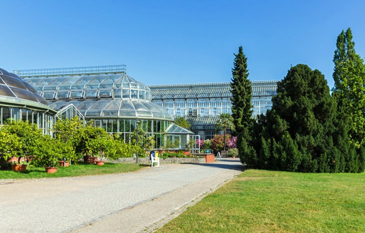 The Berlin-Dahlem Botanical Garden and Museum