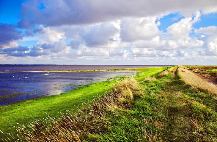 Wadden Sea National Park