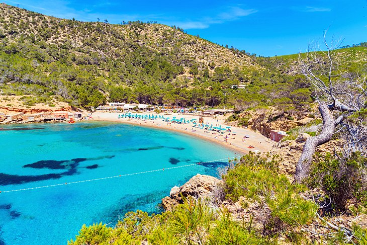 12 Top-Rated Beaches in Ibiza | PlanetWare