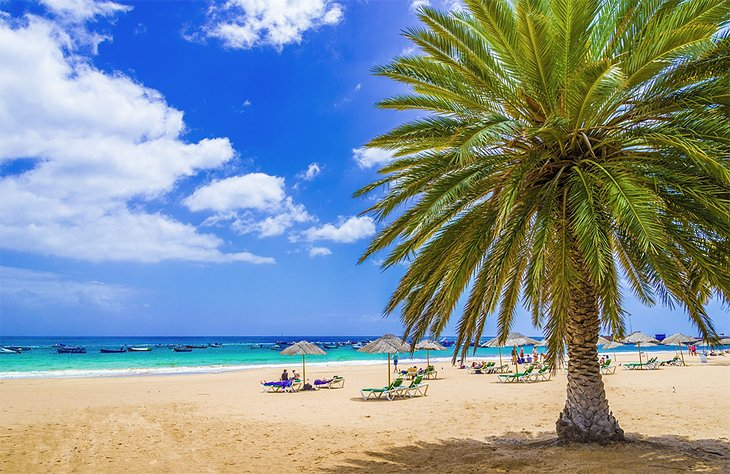 The Beaches of Tenerife