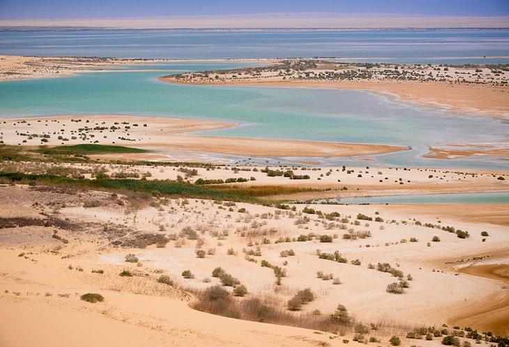 Al-Fayoum