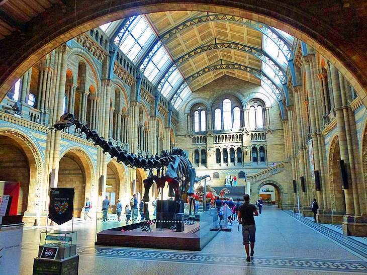 Earth Gallery Natural History Museum