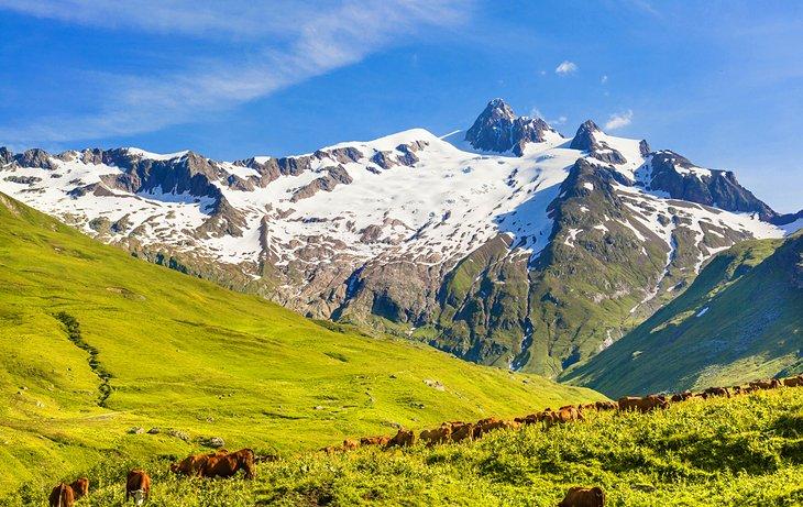 法國阿爾卑斯山