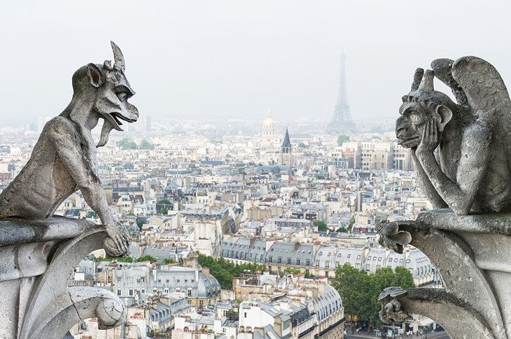 Visiting The Cathedrale Notre Dame De Paris Attractions Tips