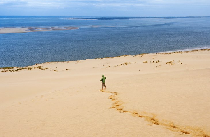 Coastal Walk in Bassin d'Arcachon or on the Dune du Pilat