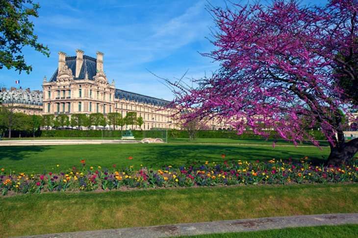 Exploring the top attractions of the louvre museum a for Jardin jardin tuileries