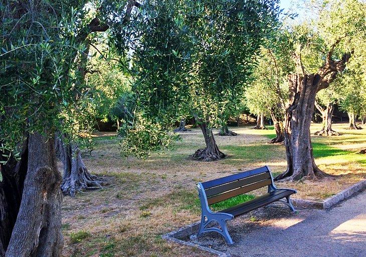Jardín de las Arenes de Cimiez