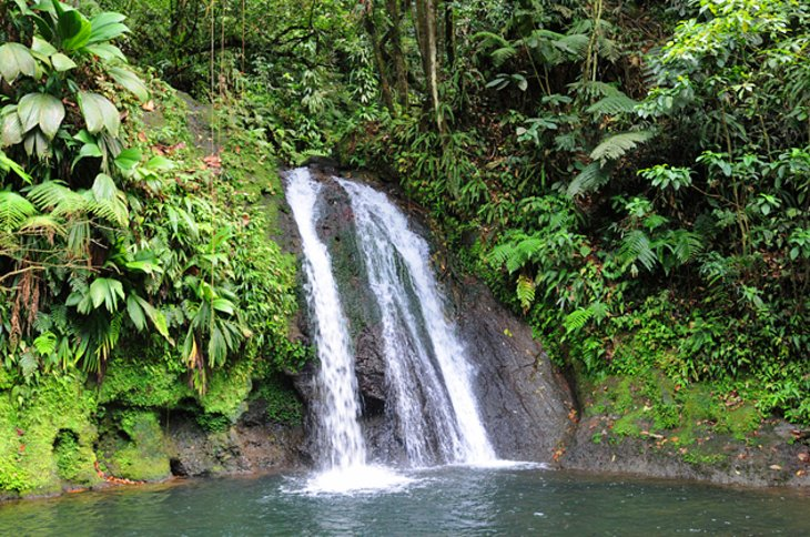 Guadeloupe National Park, Basse-Terre