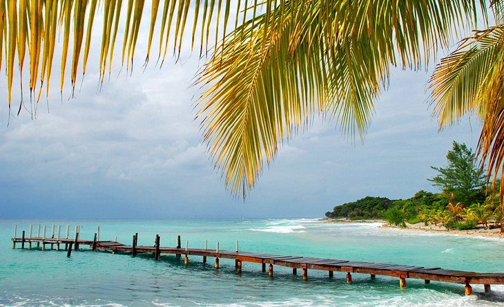 Utila، جزایر Bay