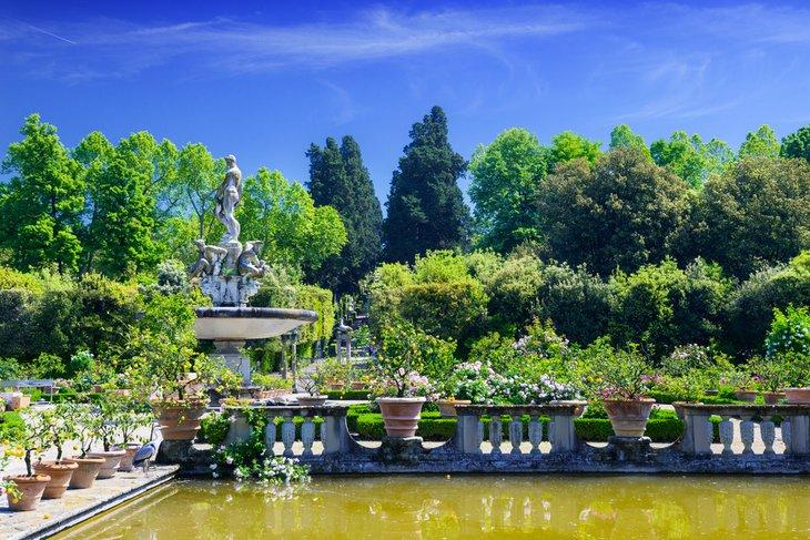 باغ بابلولی، فلورانس