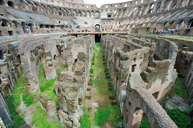 See Where the Lions Lived in the Colosseum