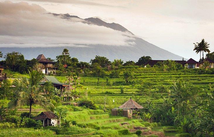 وادي سايدمن من المناطق السياحية في بالي،  إندونيسيا