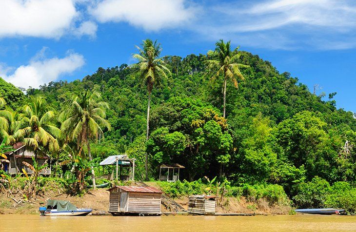 Dayak village on the Kayan River