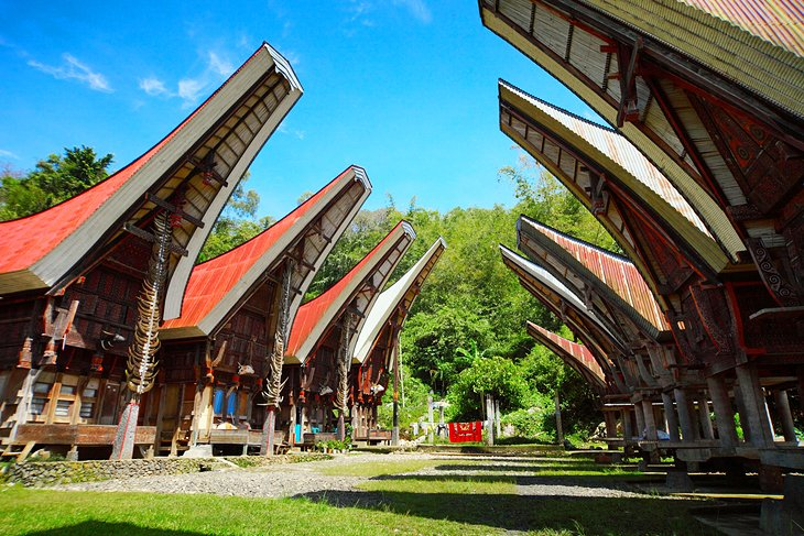 Tongkonan، خانه های سنتی
