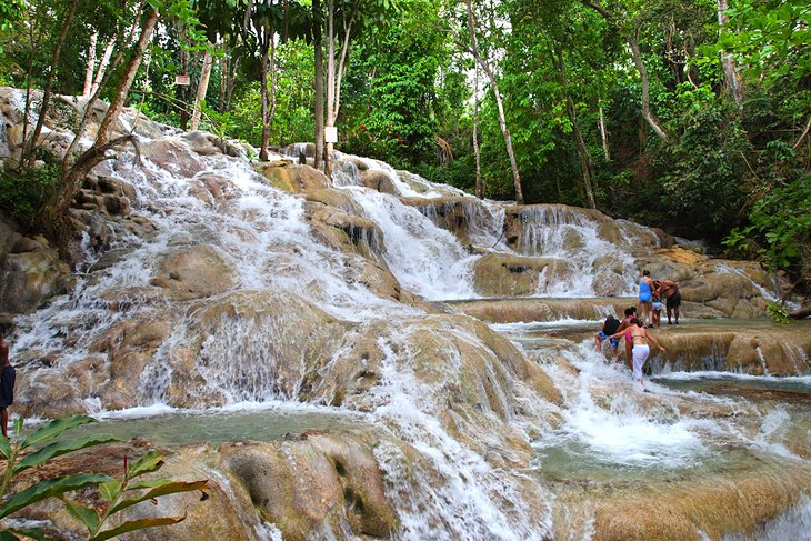 Dunn's River Falls & Nine Mile Day Trip