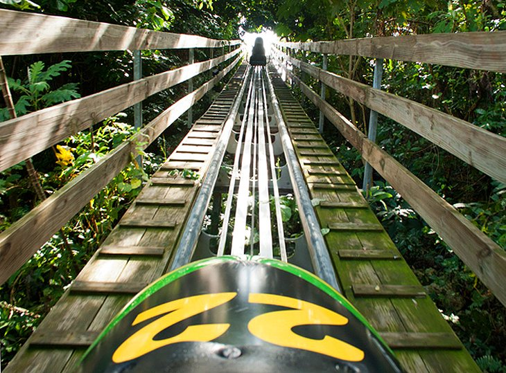 Rainforest Bobsled Jamaica at Mystic Mountain, Ocho Rios