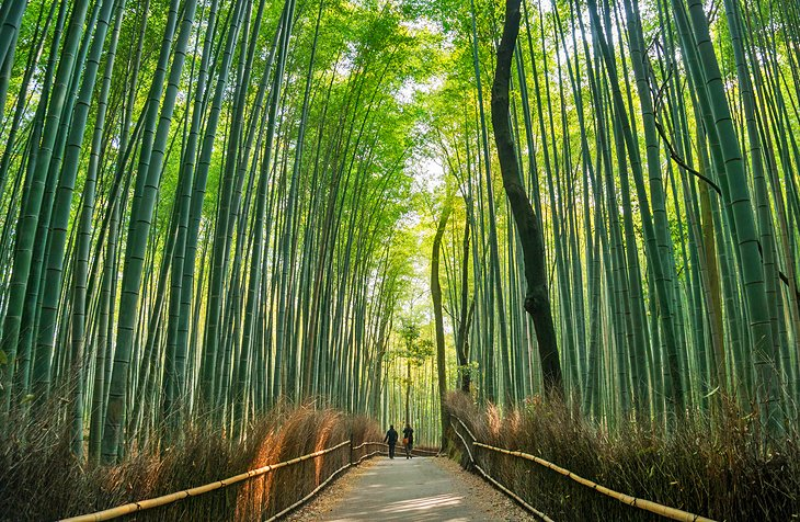 10 Top Rated Tourist Attractions In Japan Planetware
