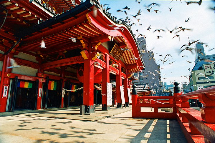 10 Top-Rated Tourist Attractions in Nagoya  PlanetWare