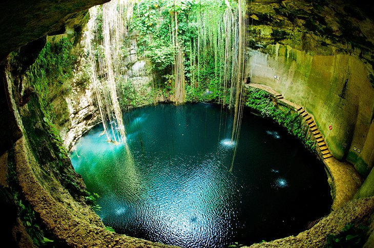 شنا در Cenotes Clear Crystal Clear در یوکاتان