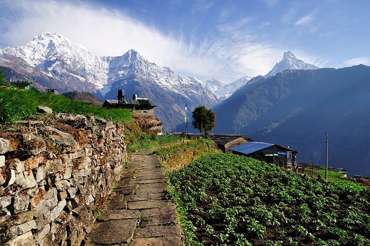 Trekking in the Annapurna Region