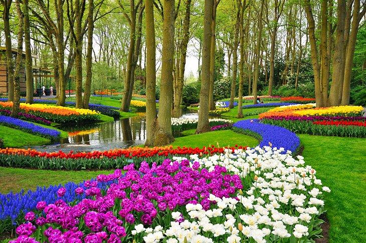 Cosa vedere nei Paesi Bassi Keukenhof: Il giardino d'Europa