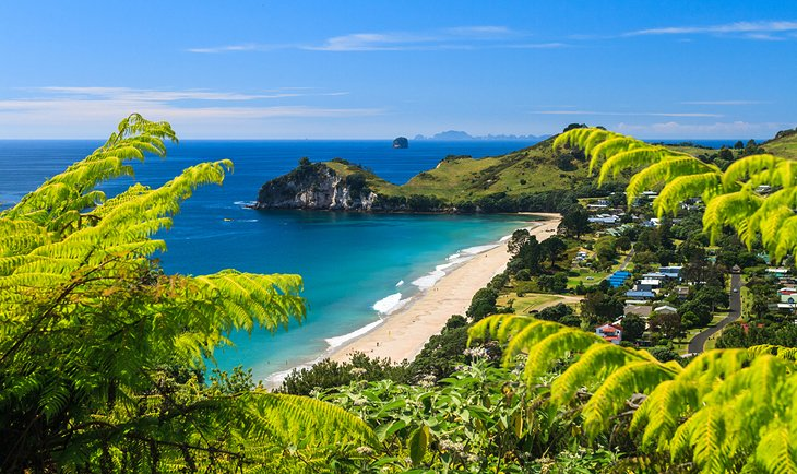 Coromandel Peninsula, North Island