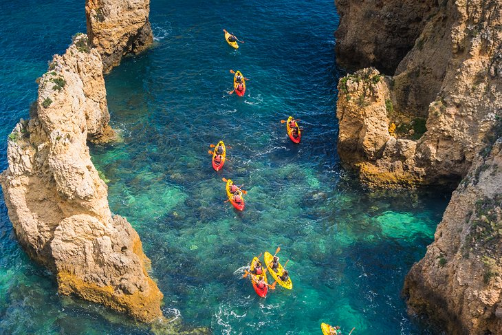 Kayak Tours along the Coast