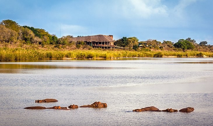 Lower Sabie Camp