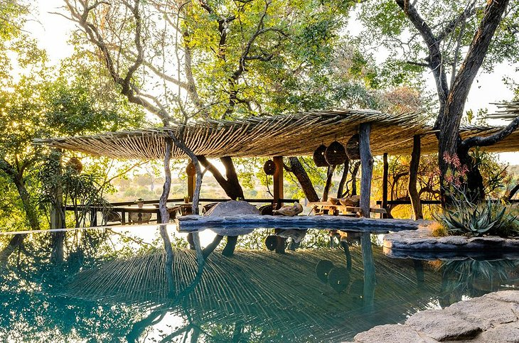 10 top rated luxury safari lodges in south africa, 2018 planetwarephoto copyright singita boulders lodge