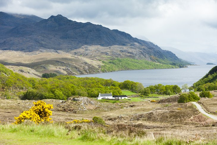 Loch Maree: Mother Nature at Her Best