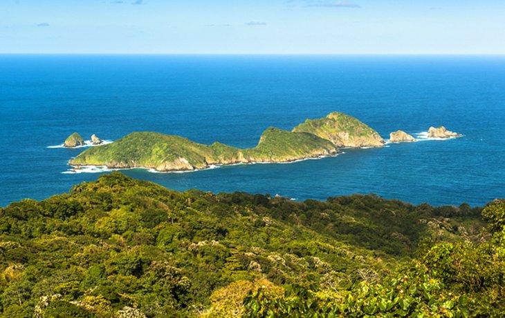 جزیره کوچک توباگو