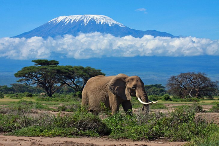 15 TopRated Tourist Attractions in Tanzania – Kenya Tourist Attractions Map