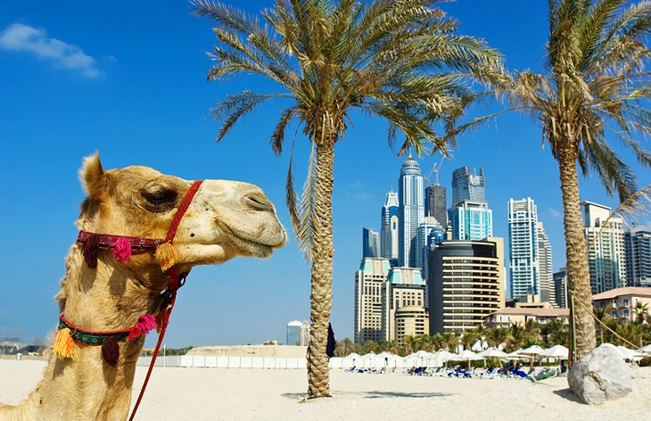 places to visit in dubai, Jumeirah Beach