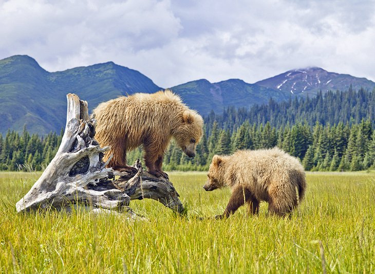 15 TopRated Tourist Attractions in Alaska – Tourist Attractions Map In Alaska