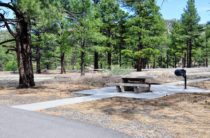 Flagstaff, Bonito Campground