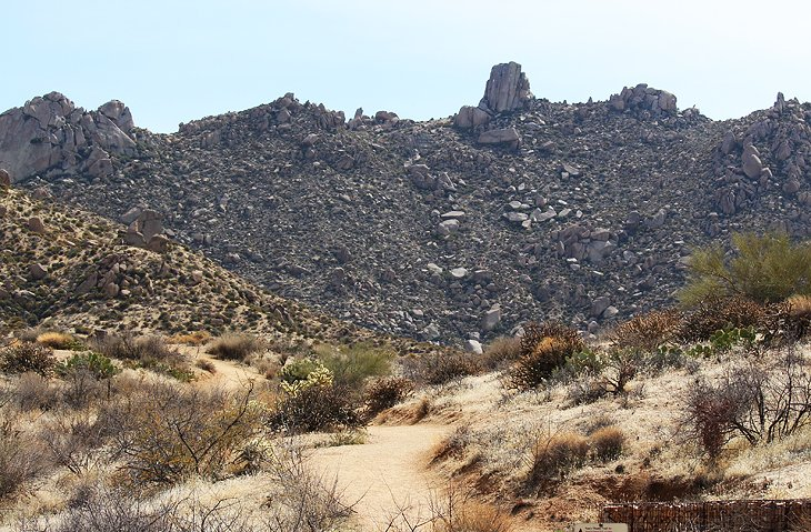10 Top-Rated Hiking Trails in the Phoenix Area | PlanetWare on phoenix bike trails map, fins map, phoenix papago park trails, phoenix bicycle trails map, phoenix lake trail map, grand canyon hiking trail map, hunter mountain hiking trail map, squaw peak hiking trail map, kapalua hiking trail map, black mountain resort map, suburban hills map, phoenix hot springs map, interna phoenix desert botanical garden map, phoenix walking trails, sedona hiking trail map, phoenix museum map, arizona hiking map, phoenix sky harbor terminal 4 map, north park trail map, trail 100 phoenix map,
