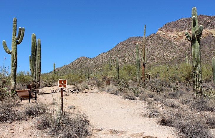 Wind Cave Trail