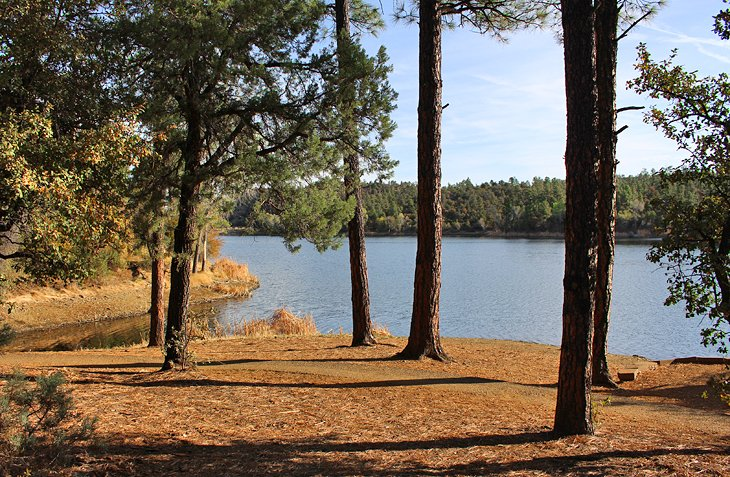 Lynx Lake Recreation Area
