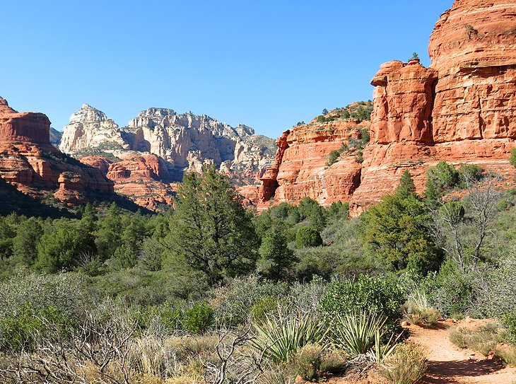 Boynton Canyon Hiking Trail