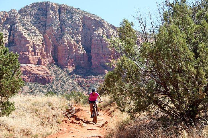 Autor Lana Law sobre Llama Trail