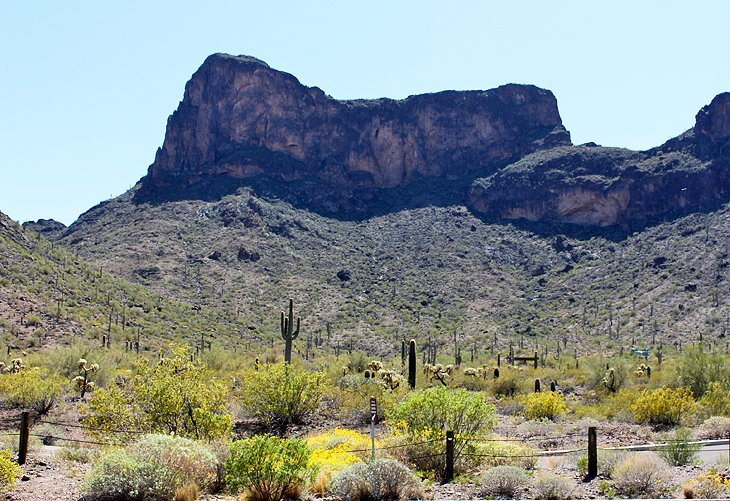Picacho Peak State Park Campground
