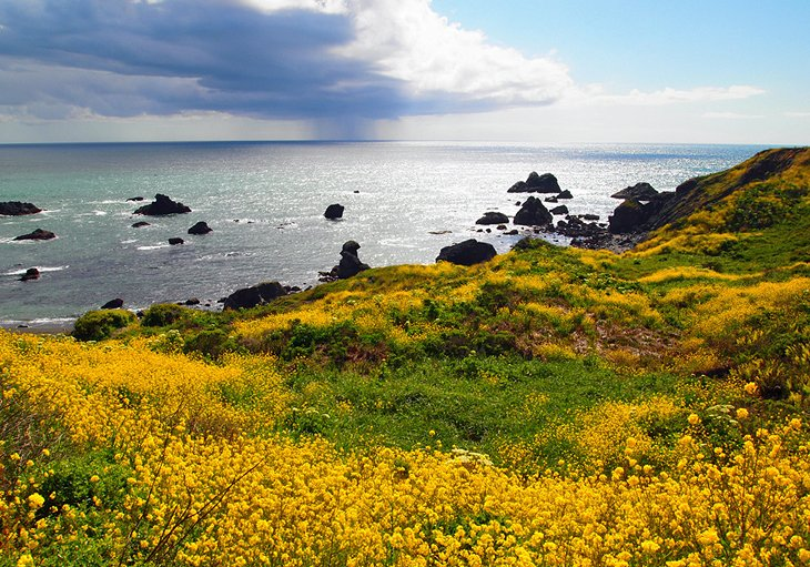 Pomo Canyon to Shell Beach in Sonoma County