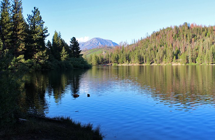 Hume Lake Campground