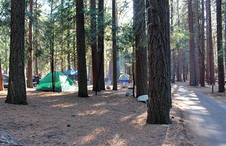 Campamento centinela