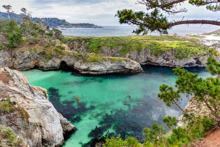 Point Lobos State Reserve in Carmel