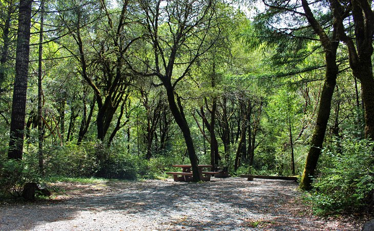 6 Campgrounds in nearby National Forest Lands: Panther Flat, Grassy Flats,  Patrick Creek