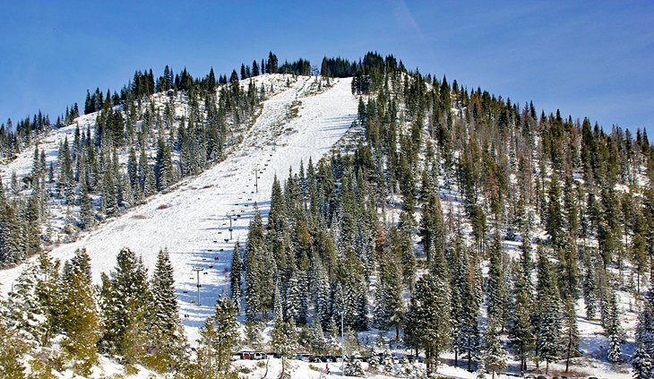 monte  Parque de esquí Shasta
