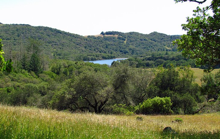 Trione-Annadel State Park in Sonoma County