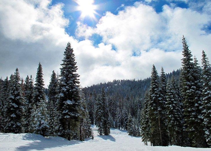 8 Best Ski Resorts in Lake Tahoe, 2018 | PlanetWare