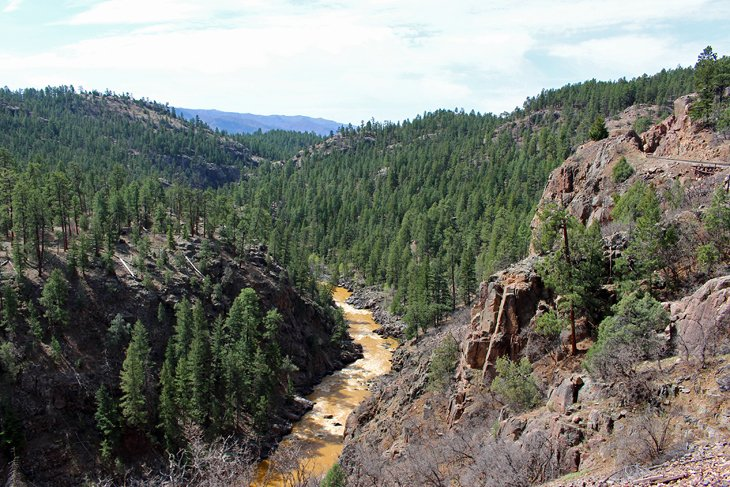 The Animas River in San Juan National Forest